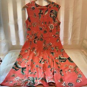 Ann Taylor Women's Dress Size 10 EUC
